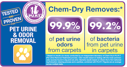 Brown's Chem-Dry removes 99.9% of pet urine from carpets in Buffalo and Cokato MN