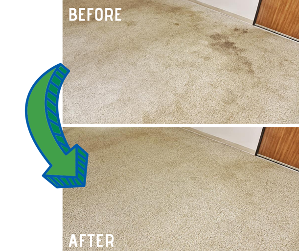 before and after carpet cleaning results in Cokato MN