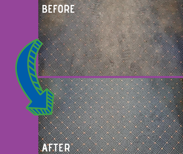 before and after carpet cleaning results with Brown's Chem-Dry in Cokato MN